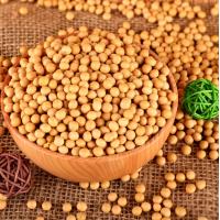 有机 黄豆